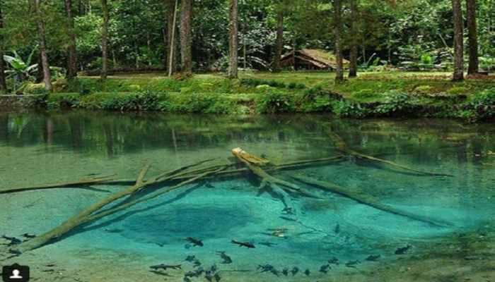 7 Daftar Wisata Alam Di Blitar